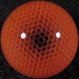 Mini Honeysphere  Size: 0.84  Price: SOLD