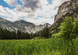 Zumwalt Meadow in Kings Canyon National Park