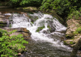 Along the Oconaluftee River in Great Smoky Mountains National Park