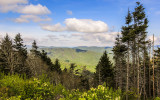 View from Newfound Gap Road in Great Smoky Mountains National Park