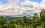 View along Clingmans Dome Road in Great Smoky Mountains National Park