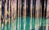 Dock pylons reflected in the water in Juneau Alaska