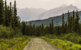Along the McCarthy Road in Wrangell-St Elias National Park