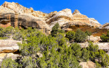 Sand Canyon along the Echo Park Road in Dinosaur National Monument