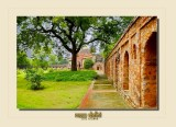 Delhi _ INDIA