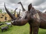 Detling Garden Show Rhino