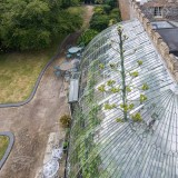 The Century Plant at the Italianate Greenhouse King George VI Park