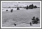Snow field, Pyrénées