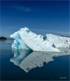 Iceberg Tracy Arm Alaska