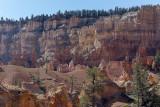 Bryce Canyon Landscape, Utah