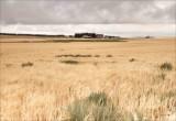 Farm, Lincoln County