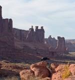 Arches National Park Moab, UT