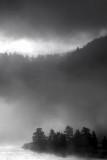 Morning mist Grand Teton National Park