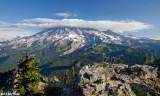 Mt Rainier from Plummer Peak