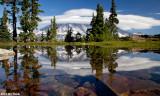 Mt Rainier from Hidden Pond