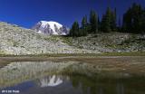 Mt Rainier from pond on Tatoosh Ridge