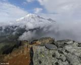 Mt Rainier from Pinnacle Peak
