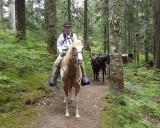 Packwood Lake Trail