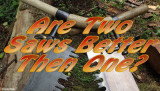 Are Two Saws better then one?  VIDEO