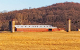 Long Barn with Siloes