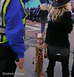 bewildered giraffe.jpg