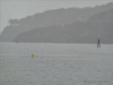 rowing in the rain.tif