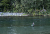 12 August 2013 - A lone angler tries his luck in the Tongariro River