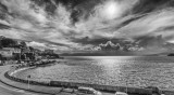 7 August 2015 - Wellington in a black and white mood