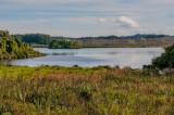 mcbDSC8274-1400.jpg - Lake Papaitonga