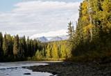 September 20-27, 2014 --- Babine River, British Columbia