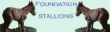 Foundation Header.jpg