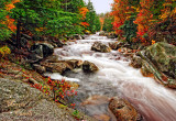 AUTUMN AND THE RAPIDS-2342.jpg