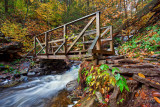 RICKETTS GLEN BRIDGE_0685.jpg