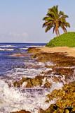 BARBER BEACH_7659.jpg