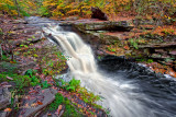 MURRAY REYNOLDS WATERFALL_0837.jpg