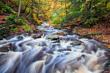 RICKETTS GLEN_0715.jpg