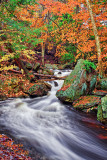 RICKETTS GLEN WATERFALL_0585.jpg