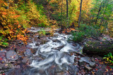 RICKETTS GLEN RAPIDS_0687.jpg