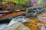 RICKETTS GLEN BRIDGE_0907.jpg