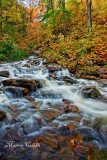 RICKETTS GLEN RAPIDS_0696.jpg