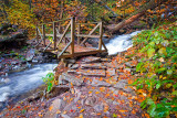 RICKETTS GLEN BRIDGE_0680.jpg