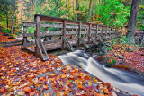 WHERE THE WATERS MEET FOOT BRIDGE_0725.jpg