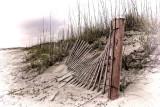 TYBEE BEACH FENCE 2079.jpg