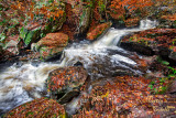 RICKETTS GLEN RAPIDS_0898.jpg