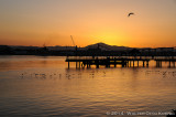 Sunrise at the Ferry Landing