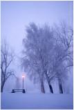 Ice fog dawn.