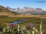 Valley of Flowers, Tasiilaq