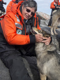 Meggi on puppy island with Greenland sled dogs