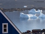 Enormous icebergs in the harbor