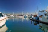 San Diego Harbor Reflection